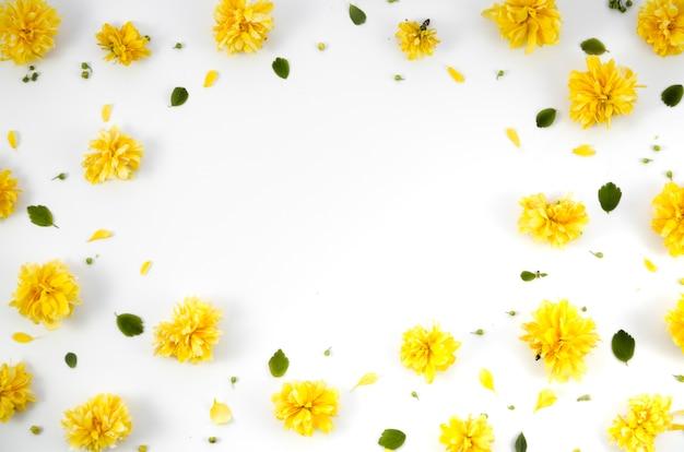 Cadre décoratif de fleurs