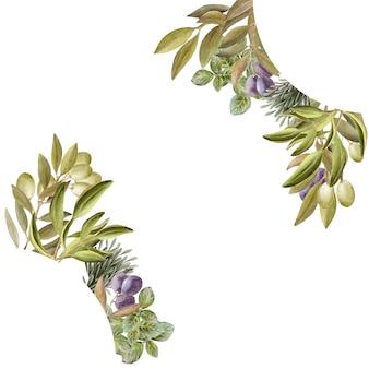 Cadre de dessin aquarelle avec des feuilles, des fruits et de l'huile d'olive. huile et herbes aromatiques