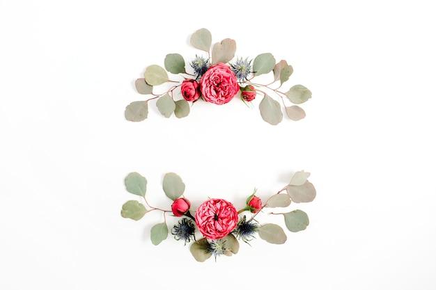 Cadre fait de boutons de fleurs roses rouges, branches d'eucalyptus isolés sur fond blanc. mise à plat, vue de dessus