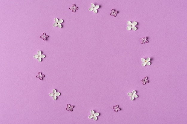 Cadre fait de fleurs de printemps lilas sur violet