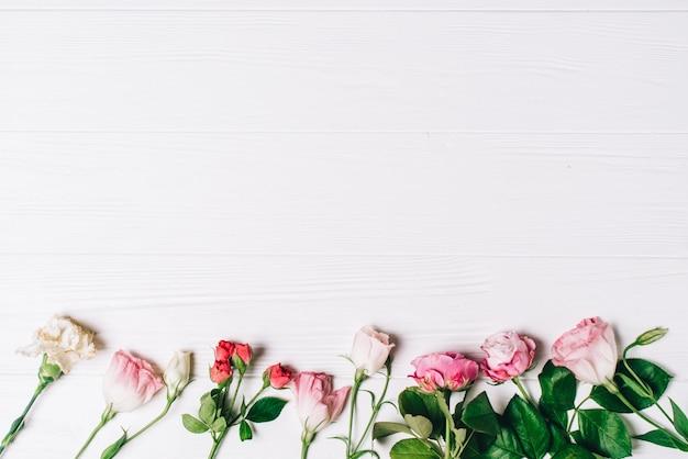 Cadre féminin d'espace de travail avec des roses roses et des pétales sur fond blanc en bois. flat lay, top view. fond de fleurs. fête des femmes, fête des mères.