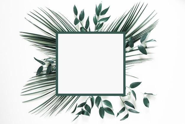 Cadre de feuille verte tropicale sur blanc
