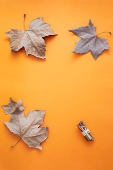 Cadre de feuilles d'érable sur backgorund lumineux. vue de dessus.