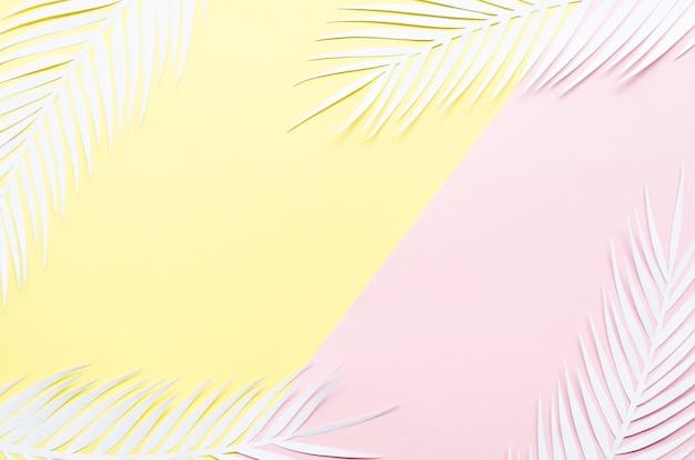 Cadre de feuilles de palmier en papier