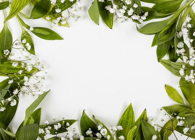 Cadre de feuilles et de petites fleurs blanches