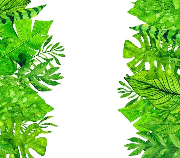 Cadre de feuilles tropicales aquarelle