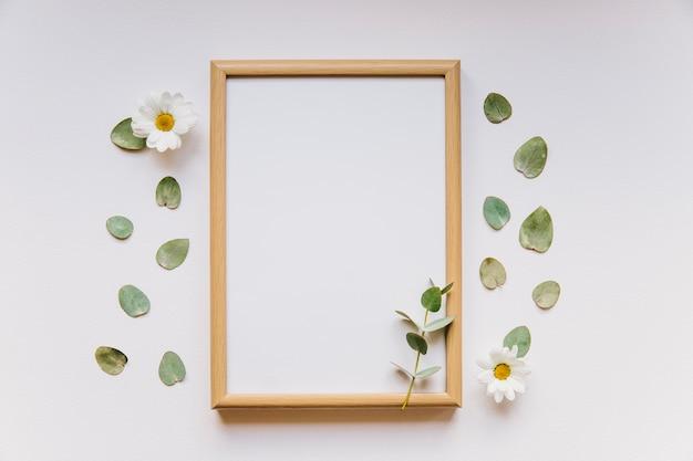 Cadre et feuilles