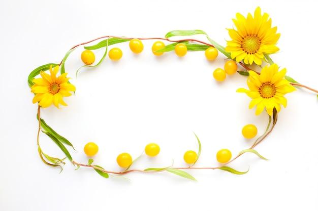 Cadre flatlay beauté été jaune sur fond blanc de close-up saule et prune cerise jaune.