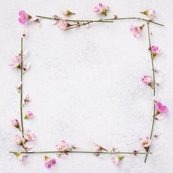 Cadre de fleurs épanouies