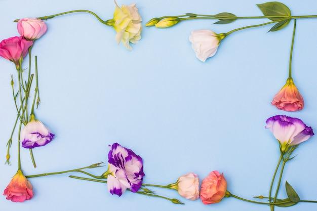 Cadre de fleurs eustoma blanches et roses