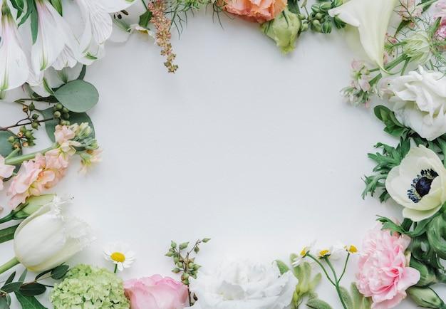 Cadre de fleurs fraîches sur fond blanc