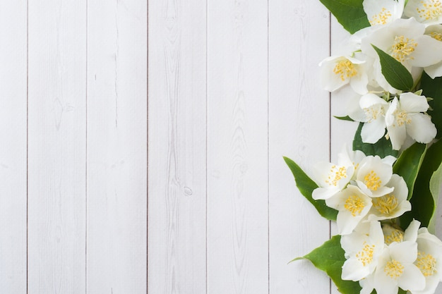Cadre de fleurs de jasmin
