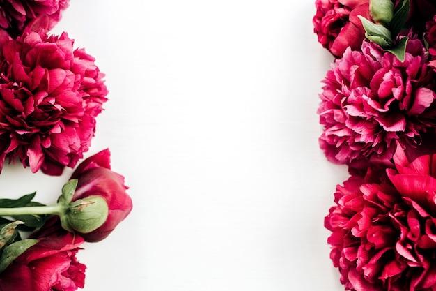 Cadre de fleurs de pivoine rose sur surface blanche
