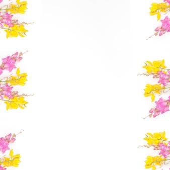 Cadre de fleurs de printemps