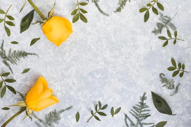 Cadre de fleurs roses et de branches de plantes