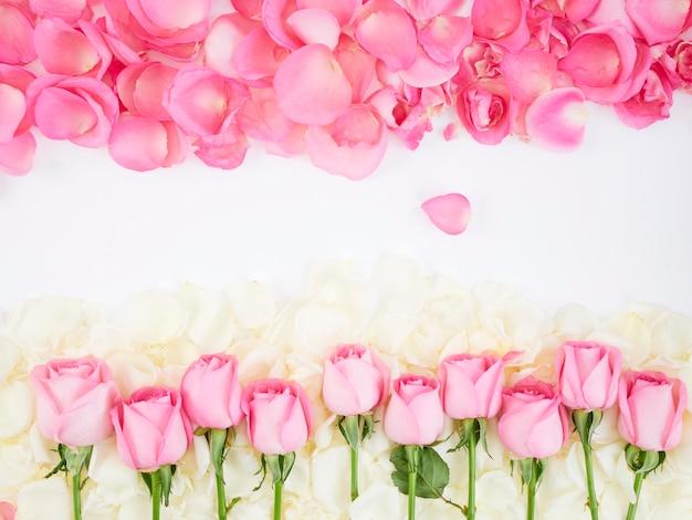 Cadre de fleurs en roses roses