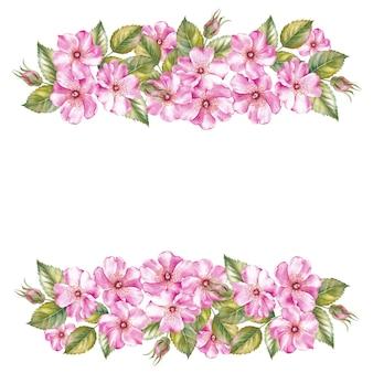 Cadre fleurs sakura