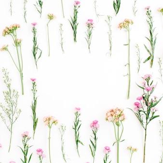 Cadre avec fleurs sauvages colorées, feuilles vertes, branches sur blanc