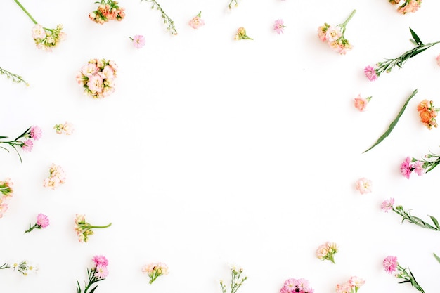 Cadre avec fleurs sauvages roses et beiges, feuilles vertes, branches sur blanc