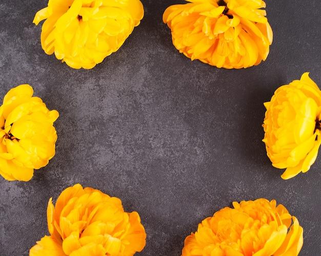 Cadre de fleurs de tulipes jaunes sur fond sombre