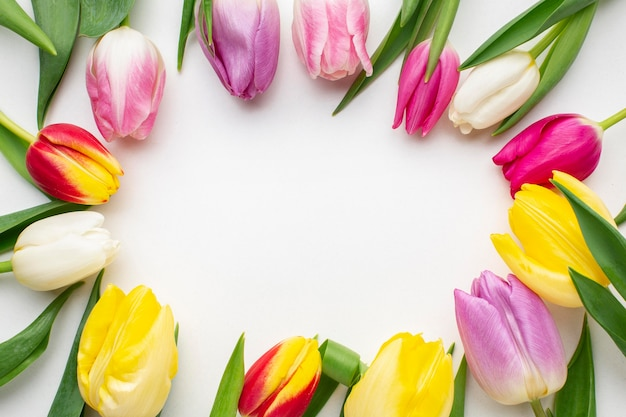 Cadre de fleurs de tulipes vue de dessus