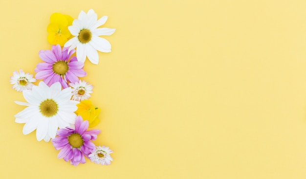 Cadre floral plat avec fond jaune