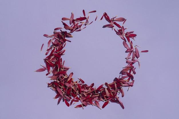 Cadre floral rond fait de pétales de chrysanthème violet