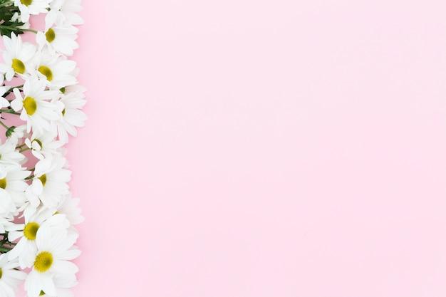 Cadre floral vue de dessus avec fond rose