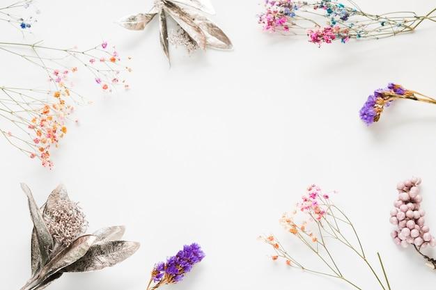 Cadre floral vue de dessus