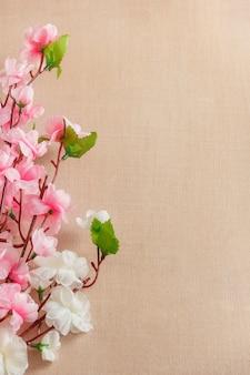 Cadre de fond de fleurs de printemps