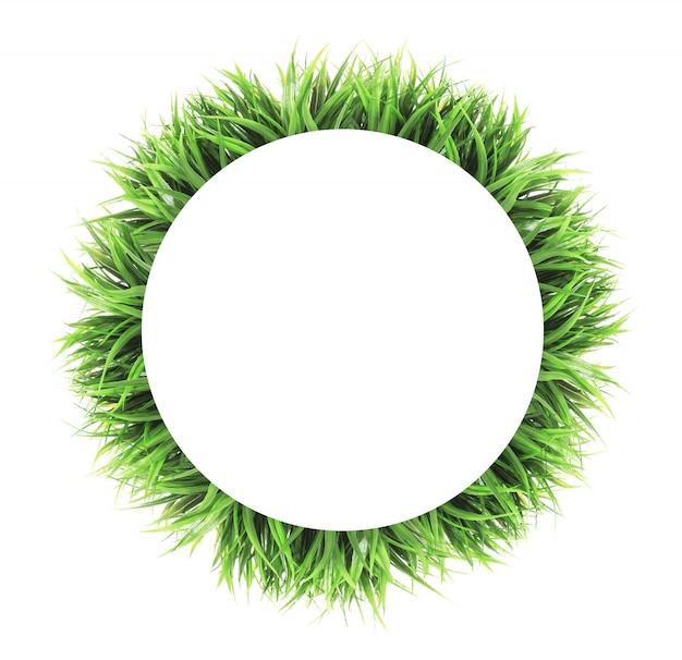 Cadre d'herbe de cercle isolé sur blanc