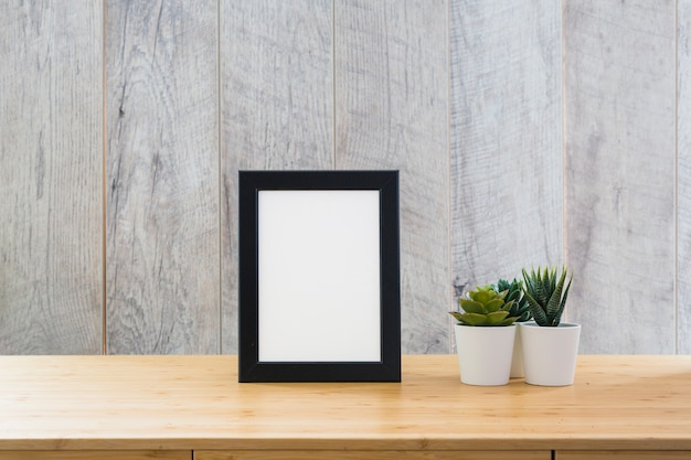 Un cadre d'image vide avec des plantes de cactus en pot
