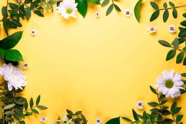 Cadre jaune d'été décoré de belles fleurs d'été. feuilles vertes et marguerites blanches vue de dessus.