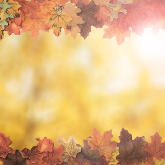 Cadre latéral de feuillage d'automne