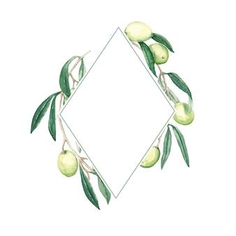 Cadre losange avec une branche d'olives vertes