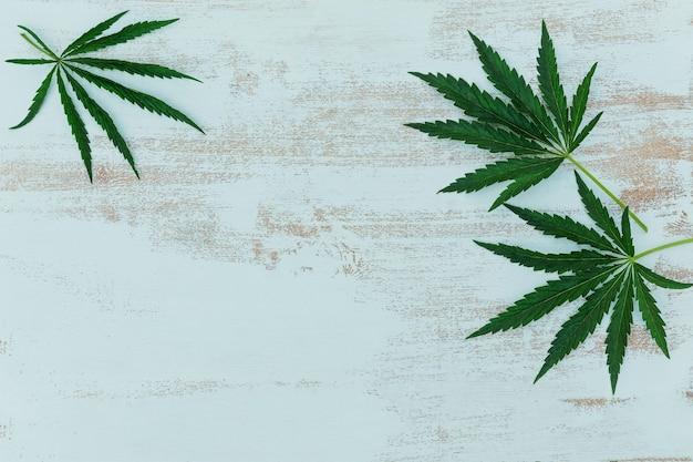 Cadre minimaliste avec des feuilles de cannabis