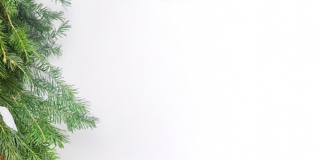 Cadre de noël avec des branches d'arbres de noël sur une bannière horizontale blanche, une copie de l'espace