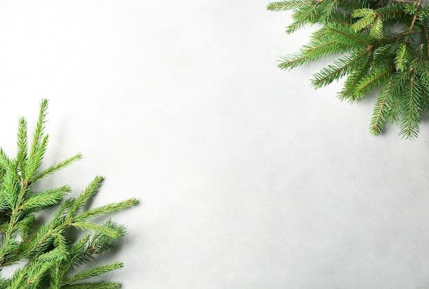 Cadre de noël de branches de sapin sur fond clair