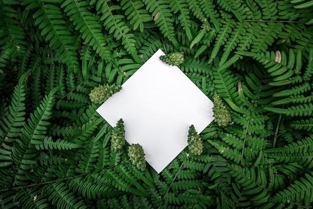 Cadre de papier losange sur un fond floral vert