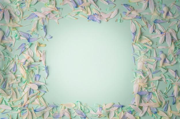 Cadre avec des pétales de fleurs de différentes nuances, avec des pétales bleus et blancs sur fond vert clair.