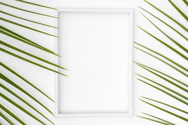 Cadre photo blanc vide avec des feuilles de palmier sur une surface unie