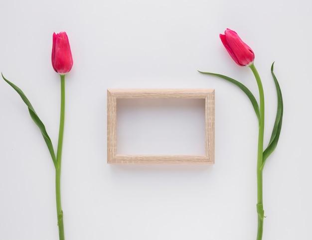 Cadre photo près de fleurs roses sur des tiges vertes