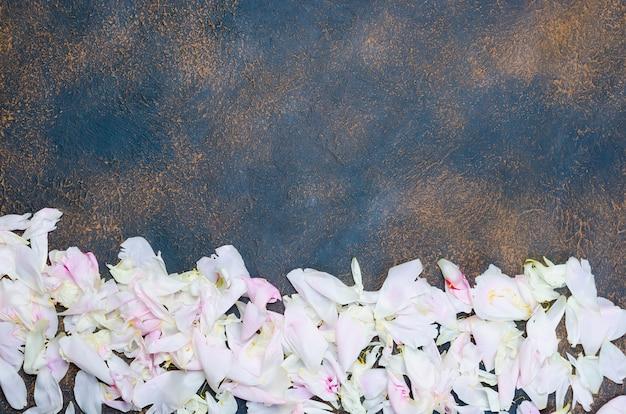 Cadre de pivoines pétales rose clair