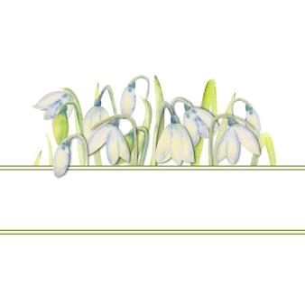 Cadre de printemps romantique avec des perce-neige sur le bord intérieur sur un fond blanc isolé. illustration à l'aquarelle.