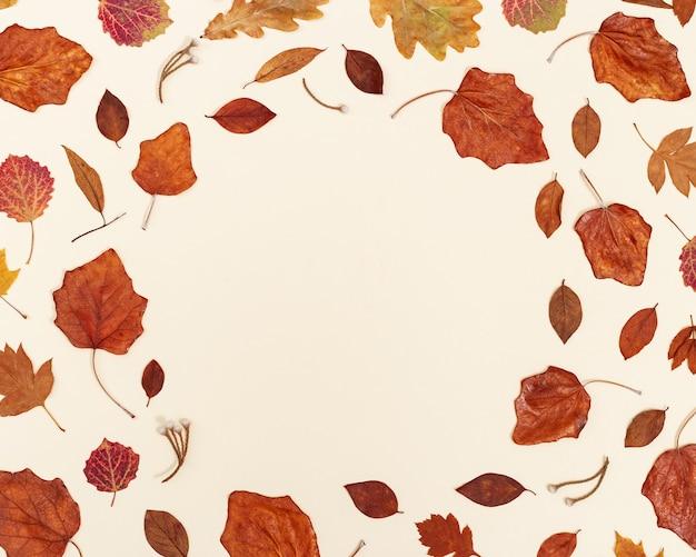 Cadre rond d'automne à partir de feuilles d'automne colorées sur fond beige neutre