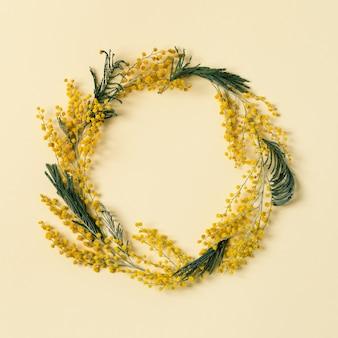 Cadre rond de fleur de mimosa fleur jaune moelleux close up branche naturelle de fleurs m