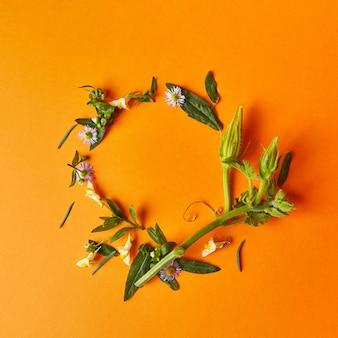 Un cadre rond de fleurs d'automne de feuilles vertes et une tige de citrouille sur fond orange à plat