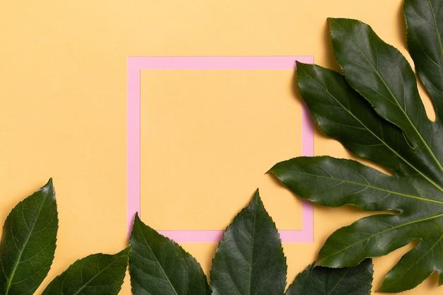 Cadre rose avec des feuilles naturelles vertes