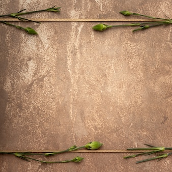 Cadre sépia en gros plan avec de petites tiges d'oeillets