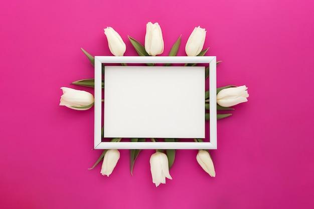 Cadre de tulipes blanches sur rose violet